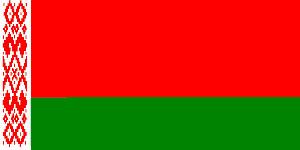 Перевёрнутый флаг Беларуси замечен в Бресте