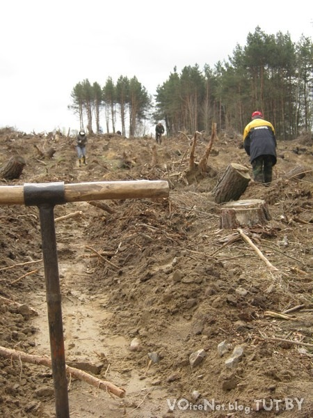 Посади дерево - сбереги реальность (4) Необходима автопомощь!