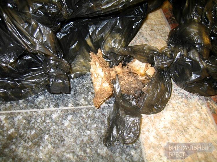 Из поезда Тересполь – Брест через окна неизвестные выбросили пакеты