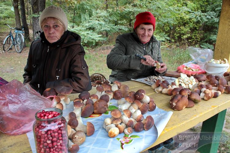 Грибной сезон продолжается... На трассах можно купить дары леса