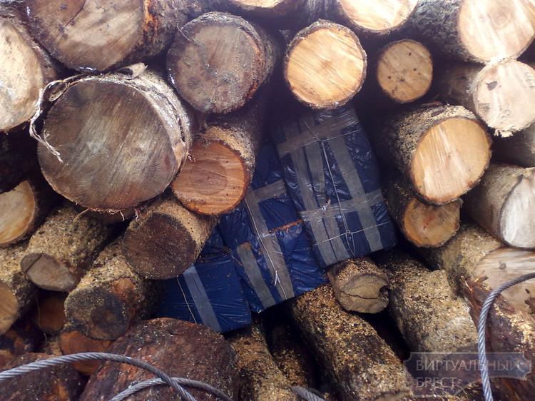 Пограничная собака нашла в составе с лесом контрабанду на сумму почти 400 млн. рубл.