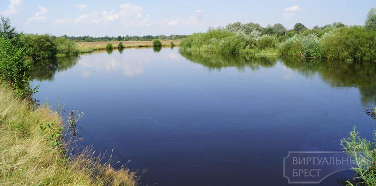 Река Лесная пополнила перечень запрещенных для весенней охоты территорий