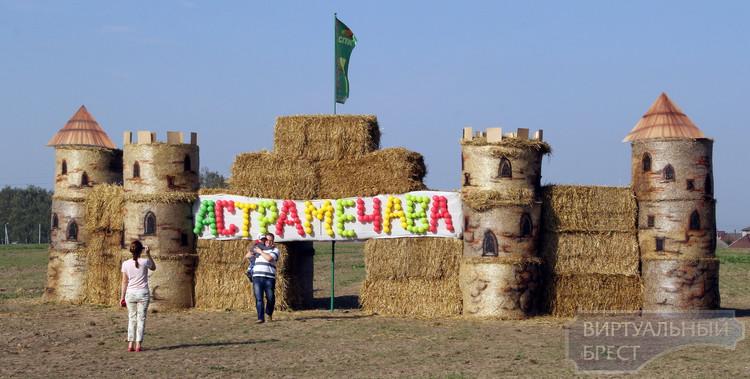 Районные «Дожинки-2014» прошли в Остромечево