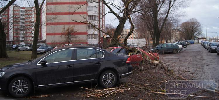 Сильный ветер повалил деревья, столбы и повредил автомобили