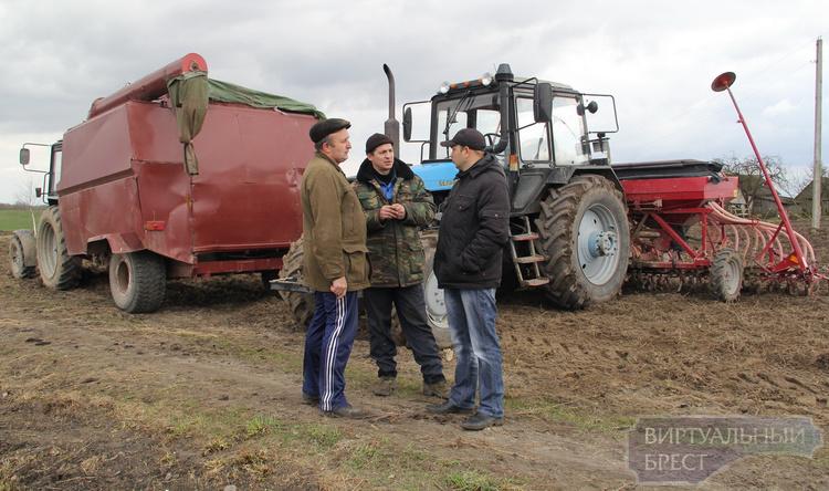 Сев ранних яровых в хозяйствах Брестского района завершается