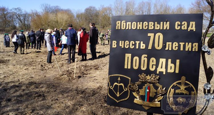 """В яблоневом """"Саду тишины"""" на острове Пограничный Брестской крепости высадили новые деревья"""