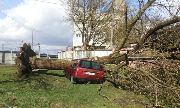 Брест восстанавливается после удара стихии