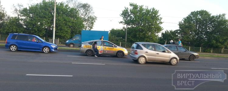 Водители помогли утятам-нарушителям не погибнуть на дороге