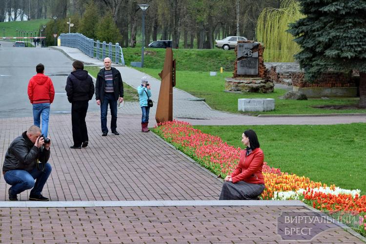 В Брестской крепости популярны аллея цветущих тюльпанов и прогулки на веломобиле