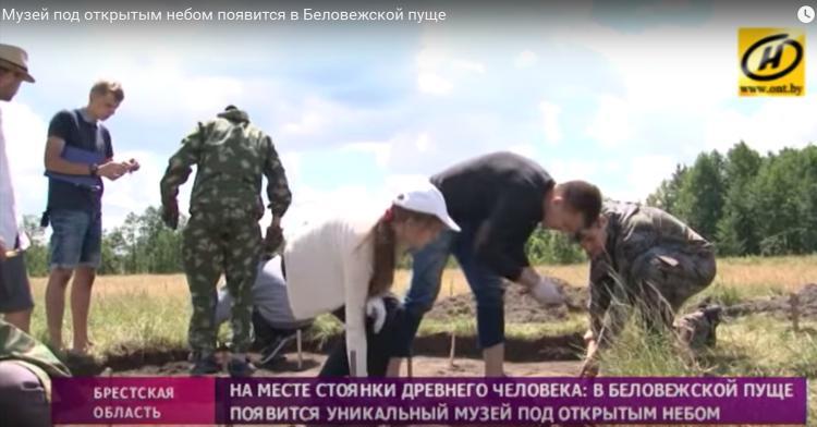 Музей под открытым небом появится в Беловежской пуще