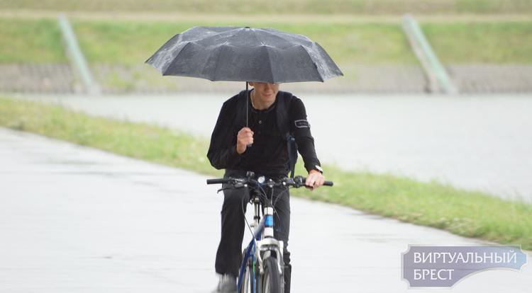 Рекордный велозаезд в Бресте собрал 200 участников