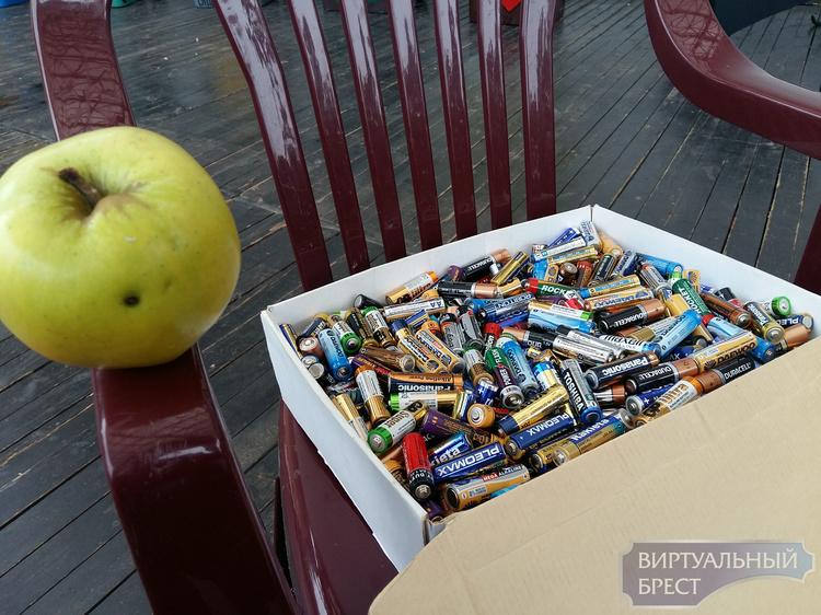 В Бресте меняли использованные батарейки на яблоки