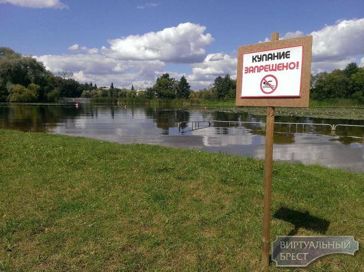 Таблички «Купание запрещено!» установлены в местах, где ограничено купание людей