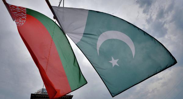 Заседание белорусско-пакистанской комиссии по торгово-экономическому сотрудничеству пройдет в Бресте