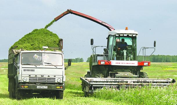 Хозяйства Брестской области планируют заготовить травяных кормов в 1,5 раза больше прошлогоднего