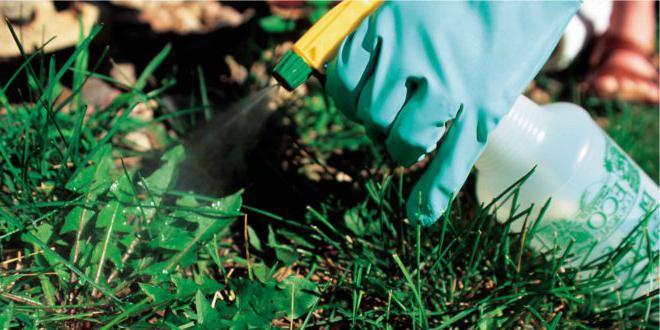 Финансовая милиция Брестской области перекрыла канал незаконной поставки гербицидов в Украину