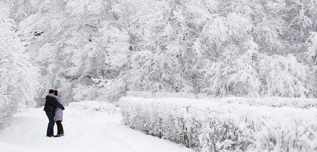 В выходные ожидается спокойная зимняя погода