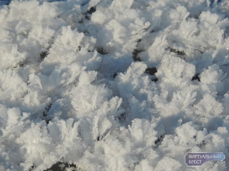 """Еще одно """"рождественское чудо"""" в Бресте - """"цветы Арктики"""" на поверхности заледеневшего Мухавца"""