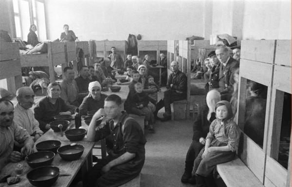 Оккупационные власти Бреста. Угон в Германию. (часть первая)