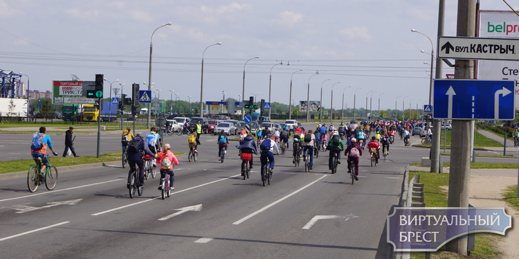 "Фестиваль ""Без мотора"" собрал под свои знамёна более тысячи колёс"