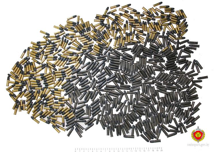 Пенсионерка из Жабинки сдала в милицию более 650 патронов