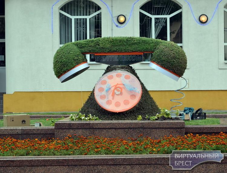 Телефон – газон появился на улице Советской в Бресте