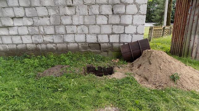 Костные останки двухвековой давности обнаружены в Беловежской пуще