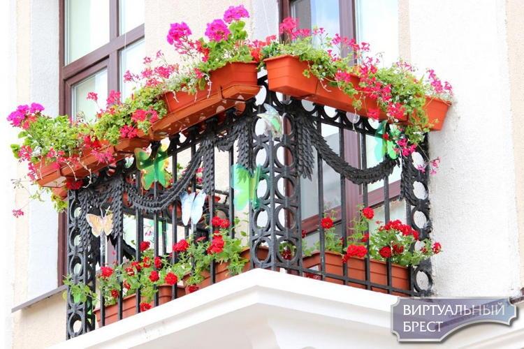 Горисполком объявляет конкурс цветов «Краски Бреста»