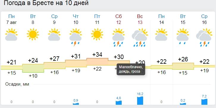 Почти идеальное лето: на неделе в Беларусь вернется жара