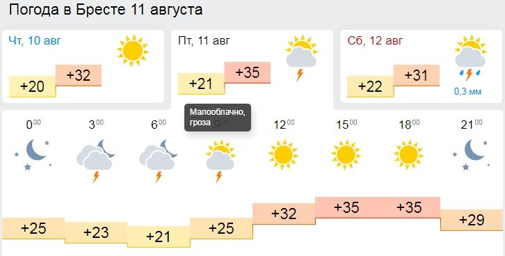 Жара идёт! 11 августа по Брестской области +35°C