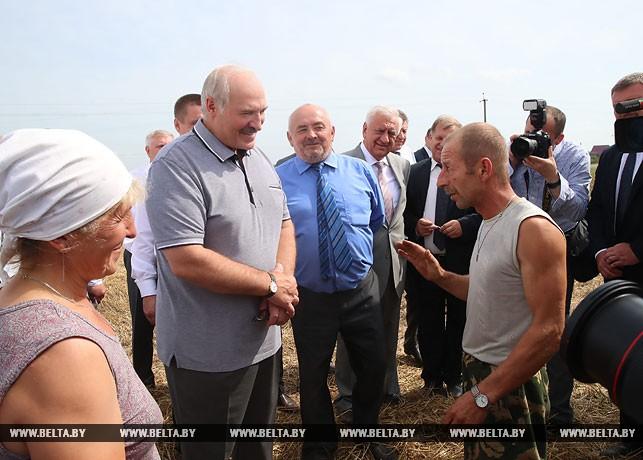 Фотофакт: Президент на уборочной в Брестской области