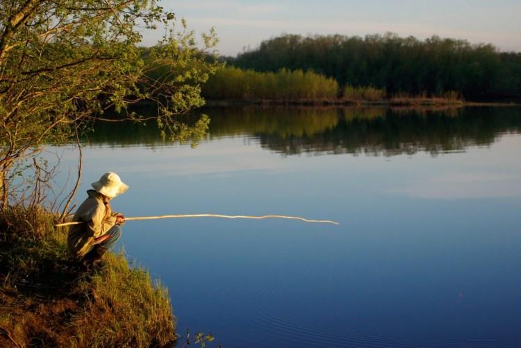 Где в Брестской области разрешено и запрещено ловить рыбу?
