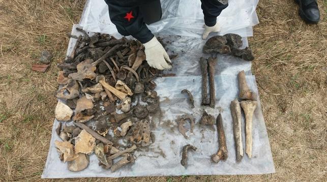 Обнаруженные на территории Брестской крепости останки не принадлежат защитникам цитадели
