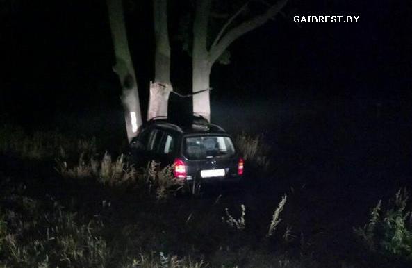 В Жабинковском районе водитель совершил наезд на дерево. Пострадала пассажир