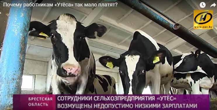 Рабочие в Барановичском районе возмущены низкими зарплатами
