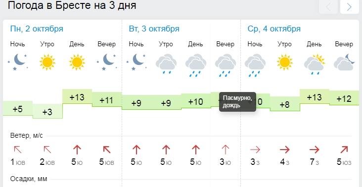 Погода, которая вам вряд ли понравится: в Бресте осень