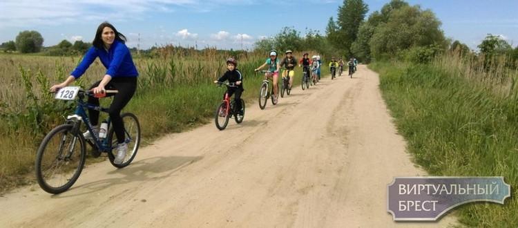 В Ленинском районе подвели итоги  летней оздоровительной кампании