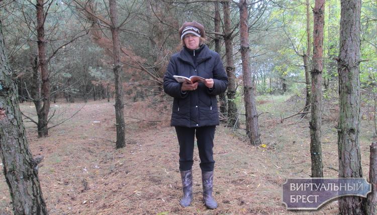"""Урок дабрыні: эколага-паэтычная акцыя """"чысты лес"""""""