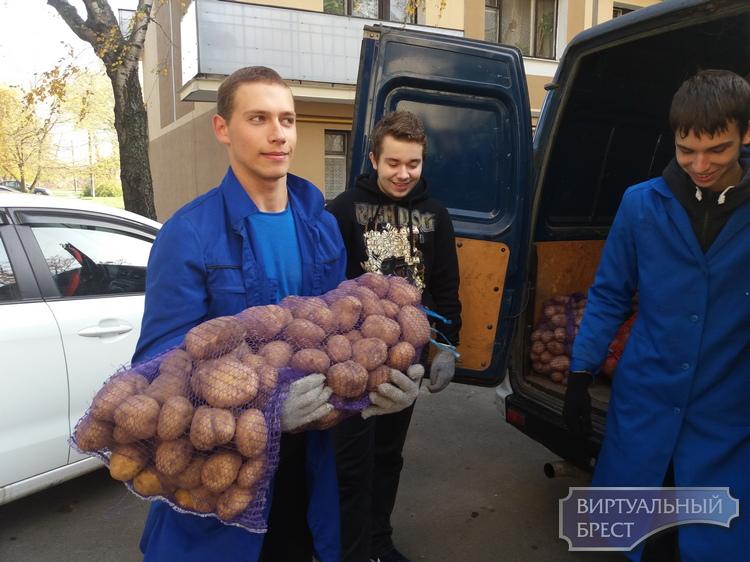 Как волонтёры-студенты помогают в работе социального такси