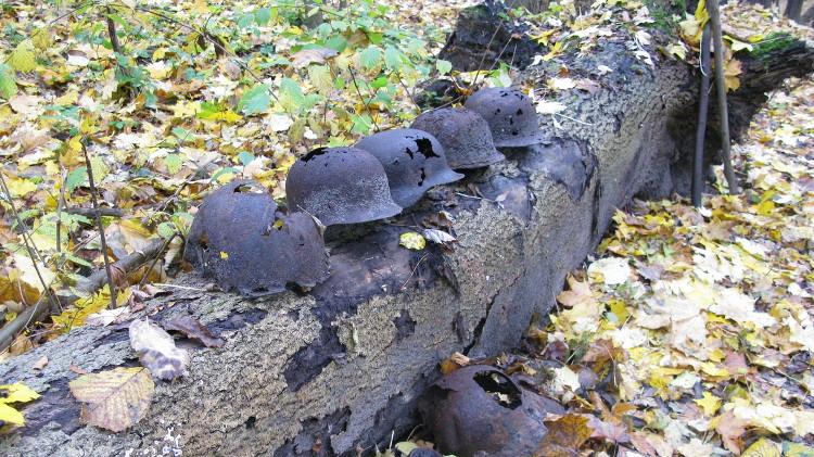 Останки немецких солдат перезахоронят в Березе
