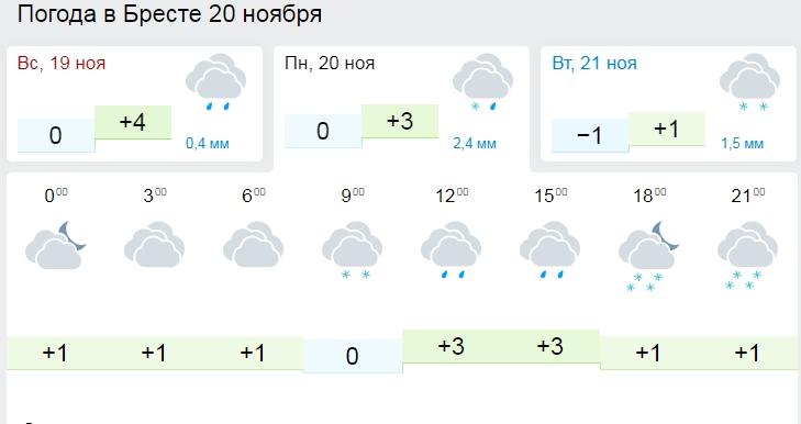 Мокрый снег и до 3 градусов мороза ожидается в Беларуси в выходные