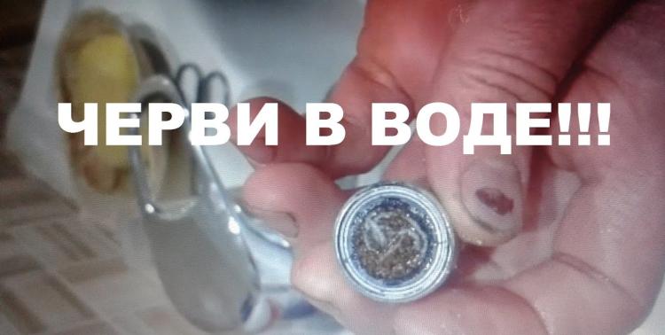 Брестчанин в центре снял фильтр воды и обнаружил там червей