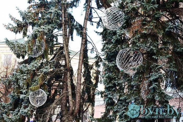 Каким будет новогоднее освещение в Бресте?