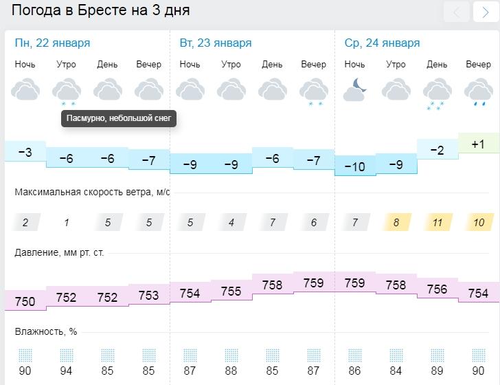 Метель и снег. Новая рабочая неделя в Бресте будет морозной