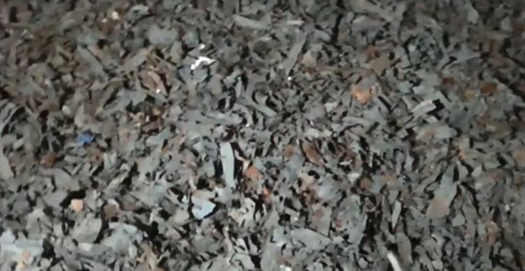 Блогеры утверждают, что нашли опасные отходы уже в Бресте