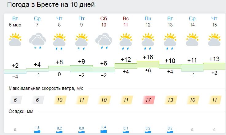 Раз — и сразу лето. В воскресенье в Бресте 15 градусов тепла