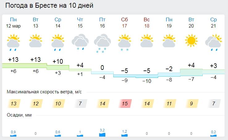Опять зима. К выходным в Бресте ожидаются похолодание и снег
