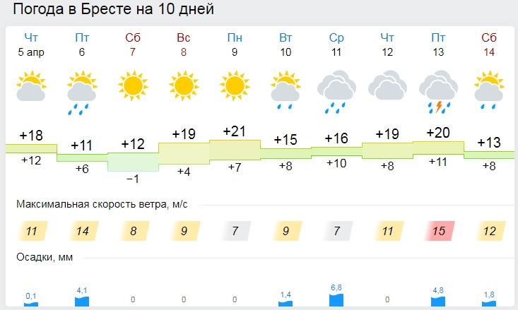 Температурный рекорд побит в Бресте 4 апреля