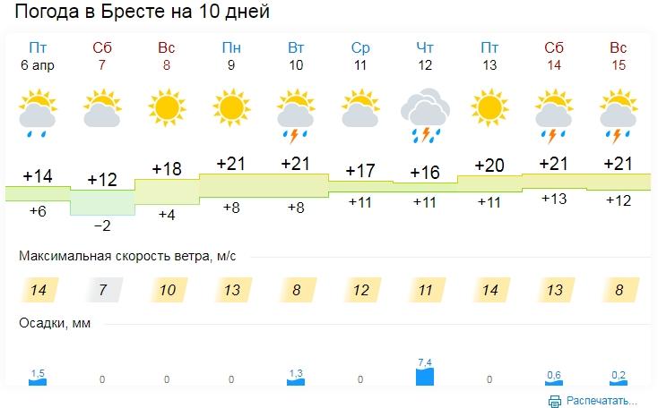 Температурный рекорд зафиксирован 5 апреля на трех метеостанциях в Брестской области