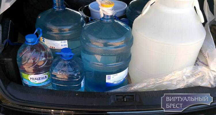 Брестчане активно заготавливают берёзовый сок